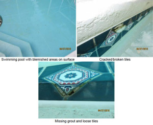 homespecReport-pool damage